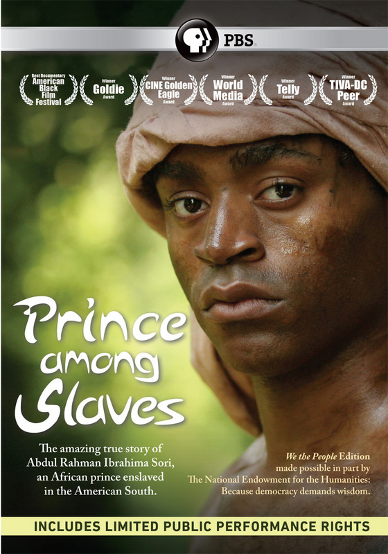 27) Prince Among Slaves (film)